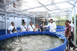 Efrani, Pebisnis Ikan Lele Beromzet Puluhan Juta Rupiah